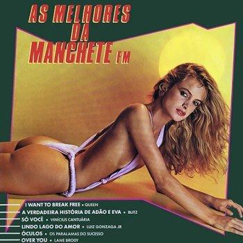 As Melhores da Manchete FM (1984)