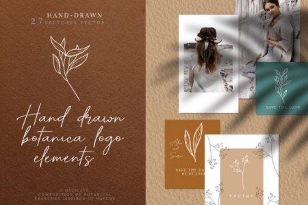 Hand Drawn Botanical Logo Elements